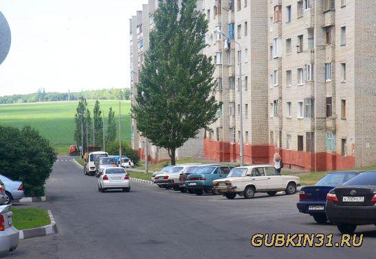 gubkin-gorod-porno