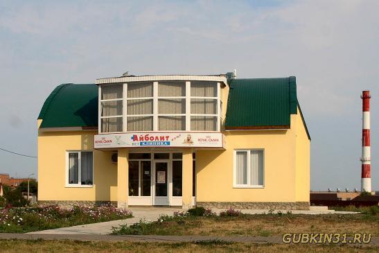 знакомство в гбелгороде и белгородской области